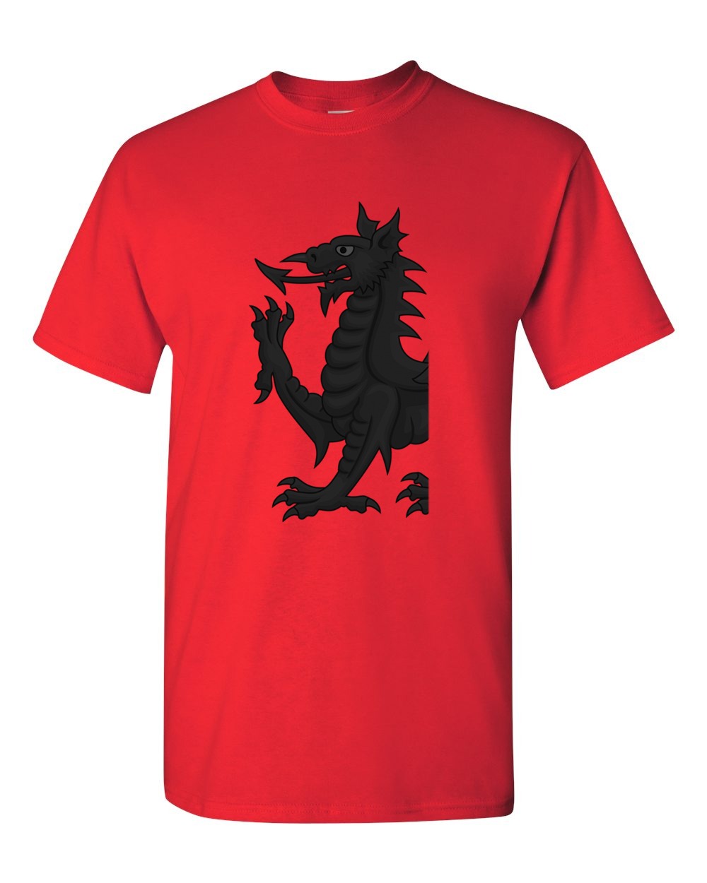 Buy Online Amazon Bits - Team Wales T-Shirt