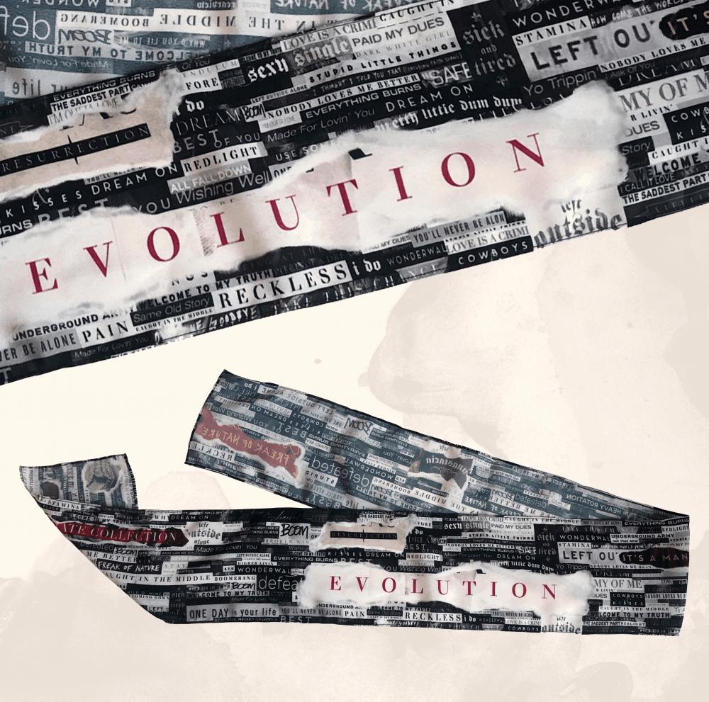 Buy Online Anastacia - Evolution Banner