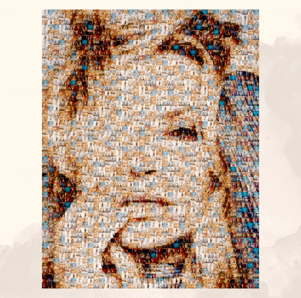 Buy Online Anastacia - A2 Evolution Collage Poster (Exclusive)