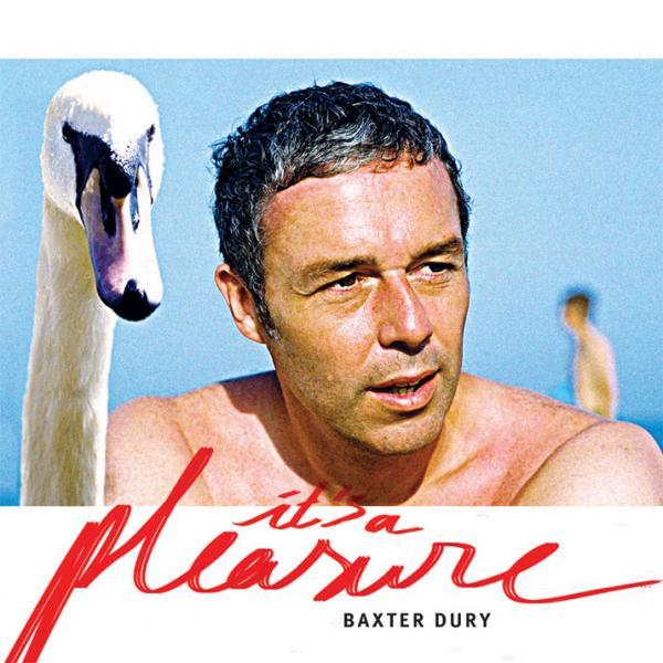 Buy Online Baxter Dury - Its A Pleasure