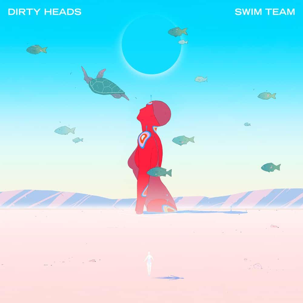 Buy Online Dirty Heads - Swim Team