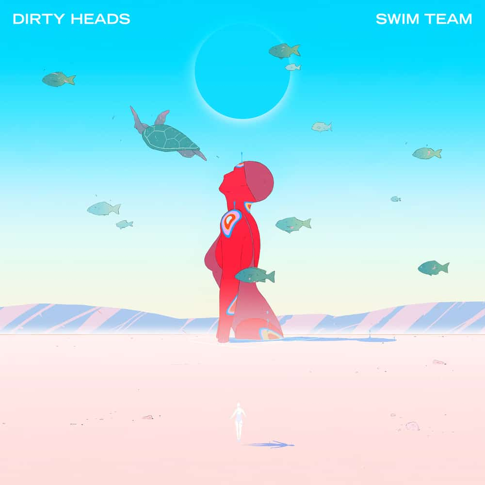 Buy Online Dirty Heads - Swim Team