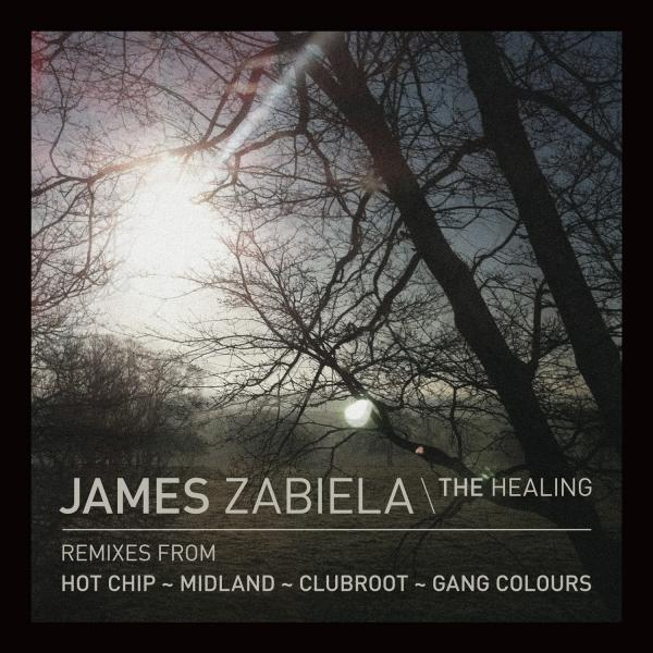 Buy Online James Zabiela - The Healing (12-Inch Vinyl)