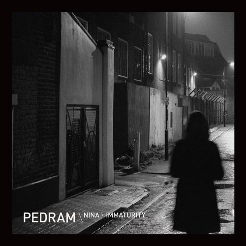 Buy Online Pedram - Nina/Immaturity (12-Inch Vinyl)