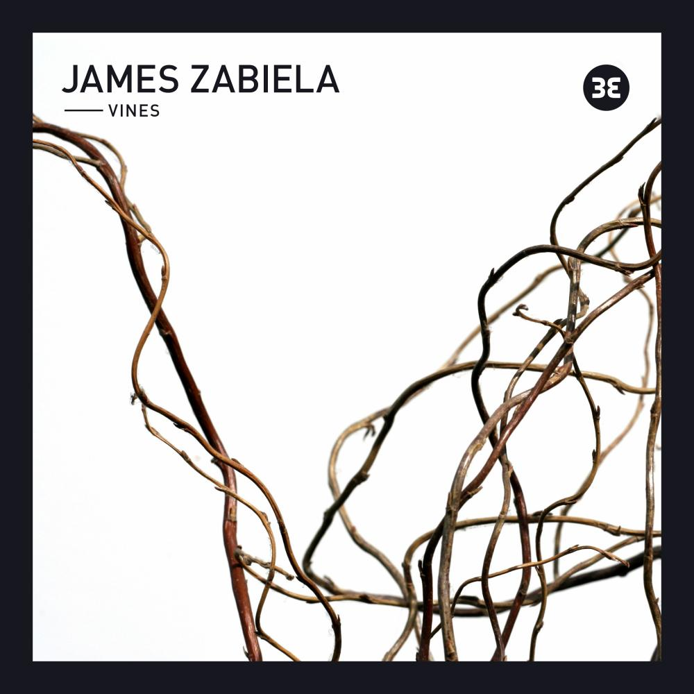 Buy Online James Zabiela - Vines EP (Download)