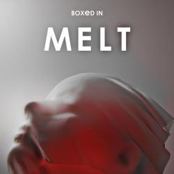 Signed Melt LP - Heavyweight Red Vinyl