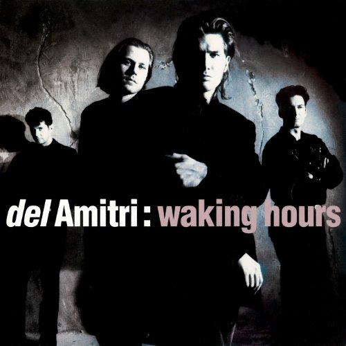 Buy Online Del Amitri - Waking Hours (Deluxe)