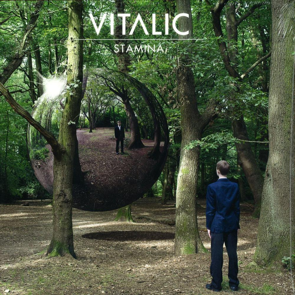 Buy Online Different Recordings - Vitalic - Stamina
