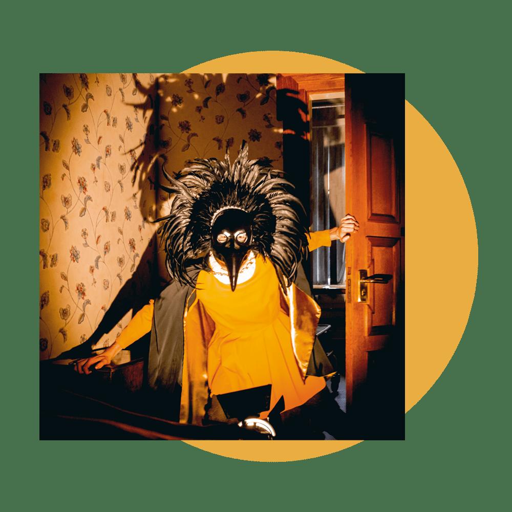 Buy Online Drenge - Strange Creatures Ltd Edition Gatefold Vinyl w/ 12