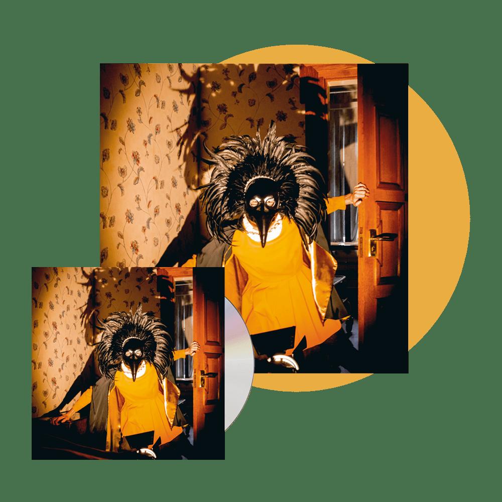 Buy Online Drenge - CD + Gatefold Orange Vinyl (Ltd Edition w/ 12