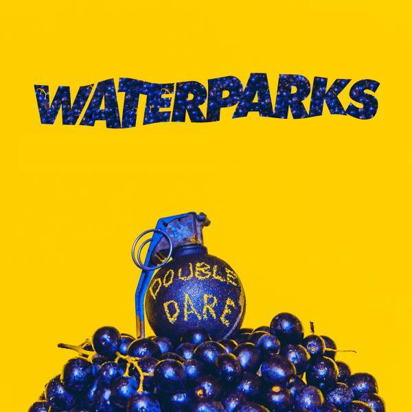 Buy Online Waterparks - Double Dare