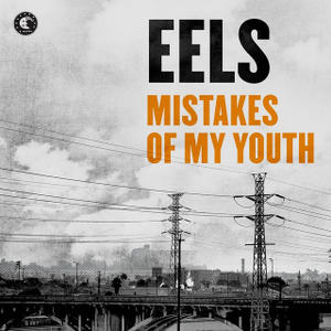 Buy Online Eels - Mistakes Of My Youth / A Good Deal