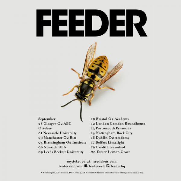 Buy Online Feeder - 2016 UK Tour Gig Ticket