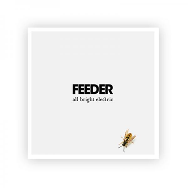 Buy Online Feeder - Exclusive 12 x 12 All Bright Electric Litho Art Print