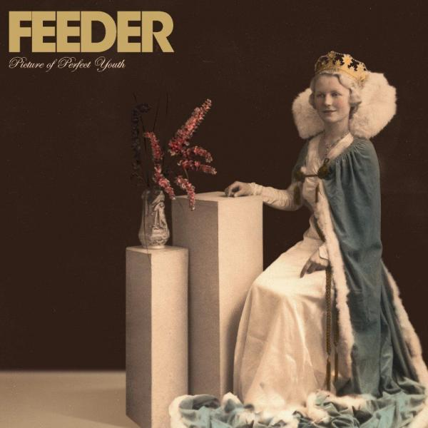 Buy Online Feeder - Picture Of Perfect Youth 3LP Vinyl