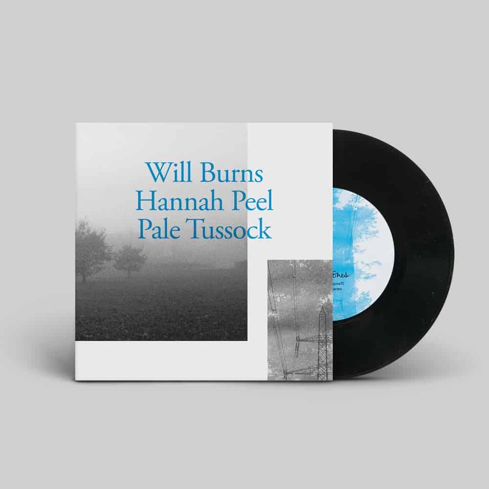 Buy Online Will Burns & Hannah Peel - Pale Tussock 7-Inch Vinyl