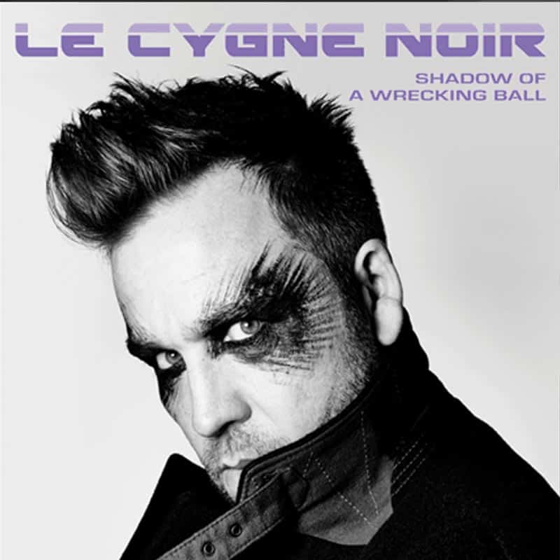 Buy Online Le Cygne Noir - Shadow Of A Wrecking Ball
