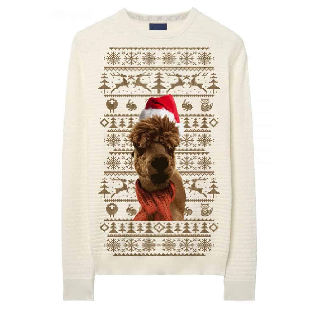 Buy Online Leona Lewis - Beige Alpaca Sweatshirt