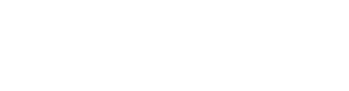 Lonely The Brave