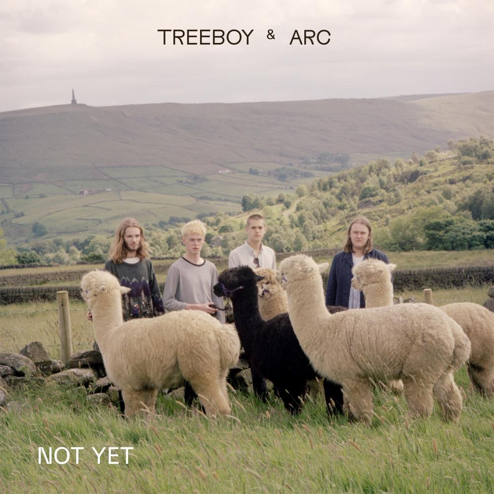 Buy Online Treeboy & Arc - Not Yet / Merge