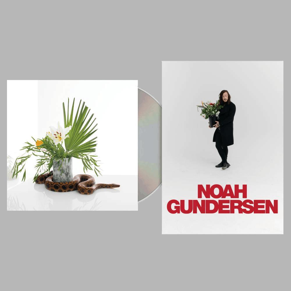 Buy Online Noah Gundersen - White Noise CD Album