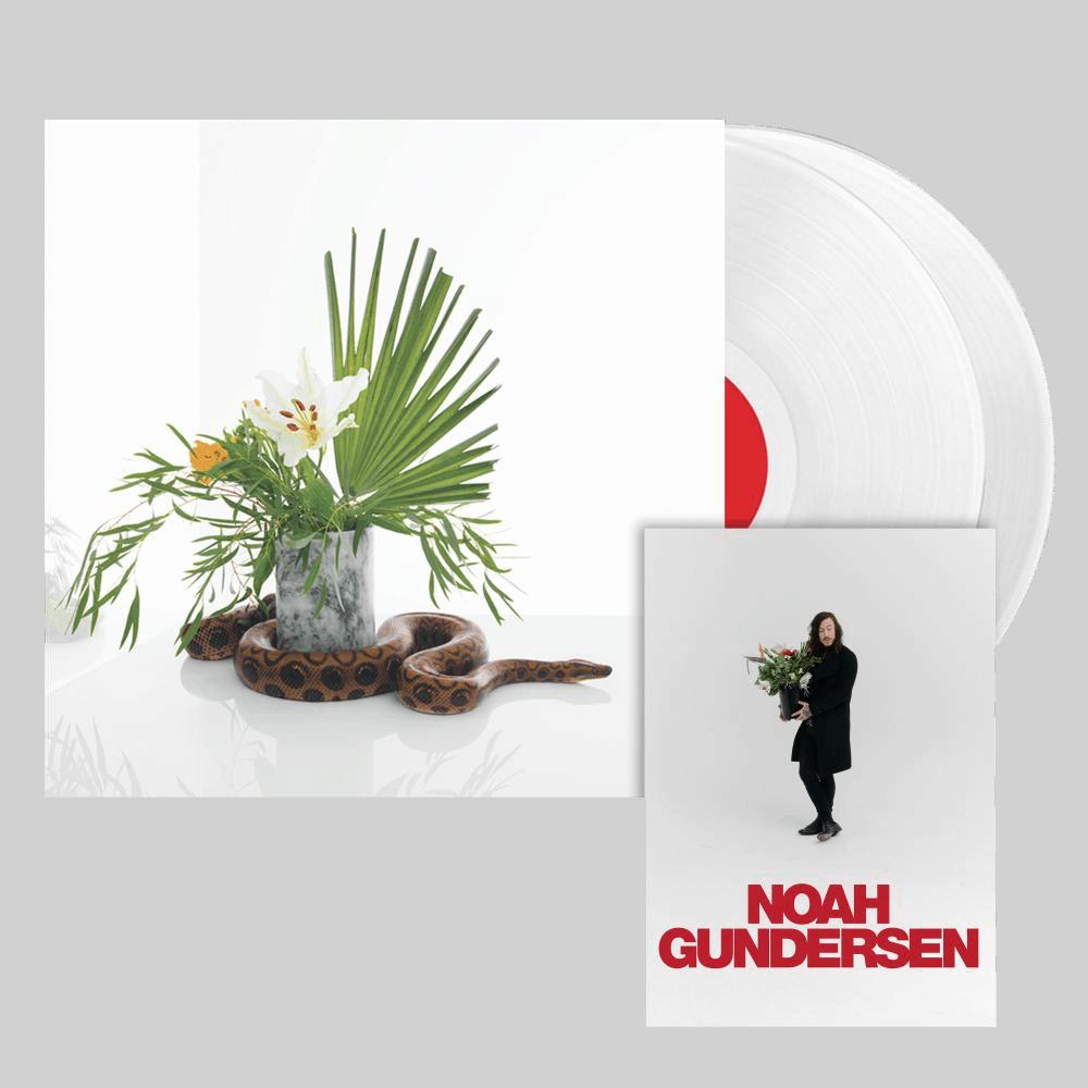 Buy Online Noah Gundersen - White Noise Vinyl