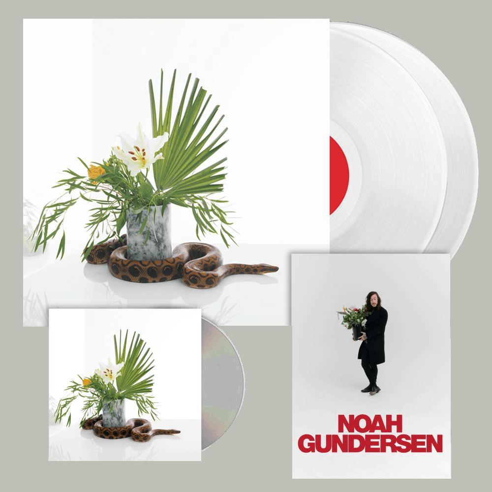 Buy Online Noah Gundersen - White Noise CD + Vinyl + Signed A5 Print