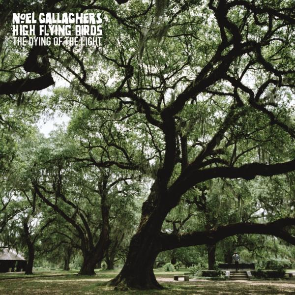 Buy Online Noel Gallagher's High Flying Birds - The Dying Of The Light (Limited Green 7 Inch)