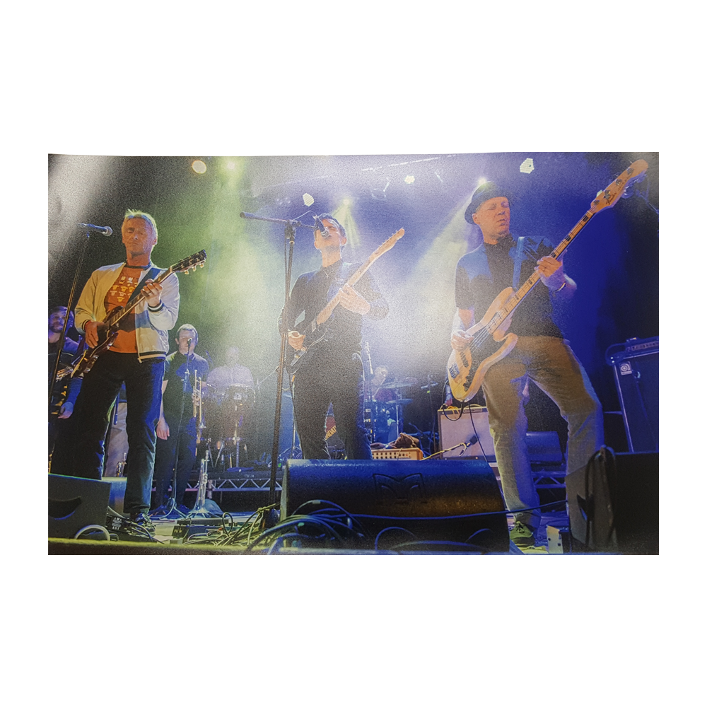Buy Online Stone Foundation - Islington Town Hall w/ Paul Weller 2017 #3