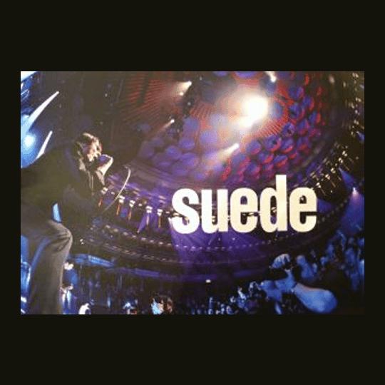 Buy Online Suede - Tour Book