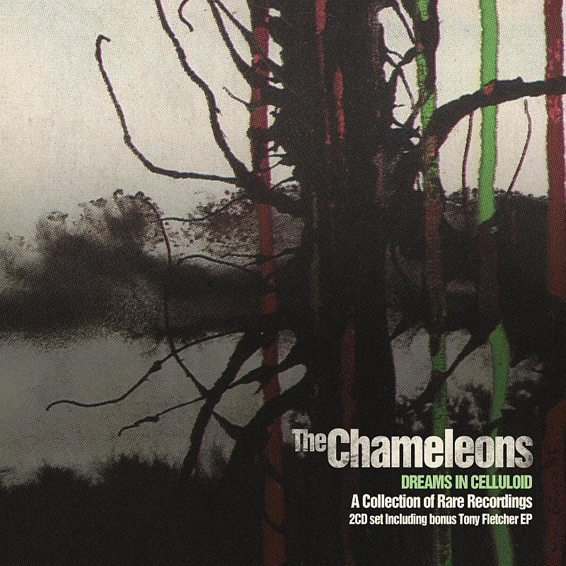 Buy Online Chameleons - Dreams In Celluloid Collectors Edition