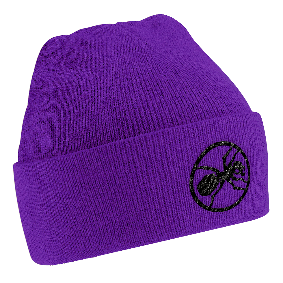 Buy Online The Prodigy - Ant Beanie Purple