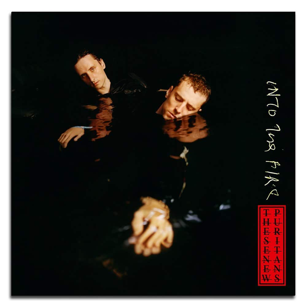 Buy Online These New Puritans - INTO THE FIRE