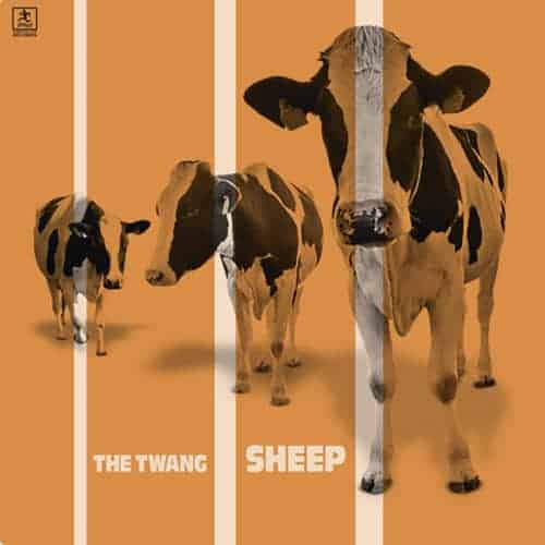 Buy Online The Twang - Sheep