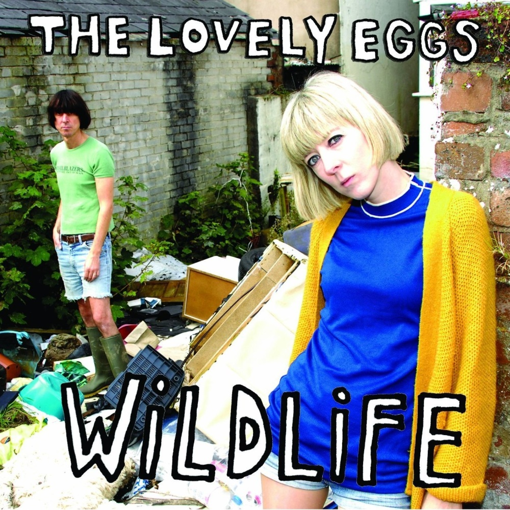 Buy Online The Lovely Eggs - Wildlife Ltd Edition Clear Frosted Vinyl
