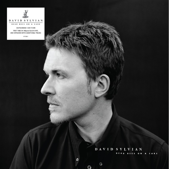 Buy Online David Sylvian - Dead Bees On A Cake Double Vinyl