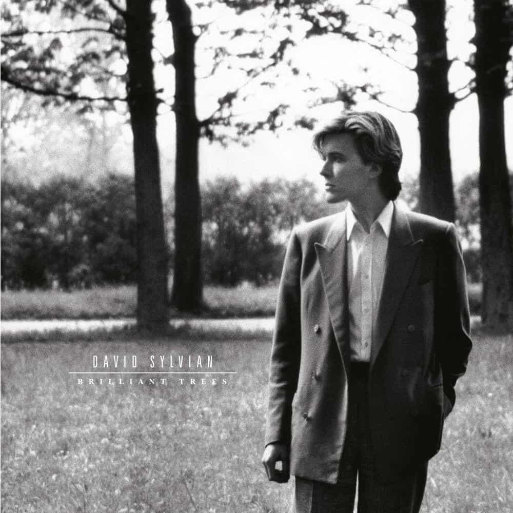 Buy Online David Sylvian - Brilliant Trees Deluxe Vinyl