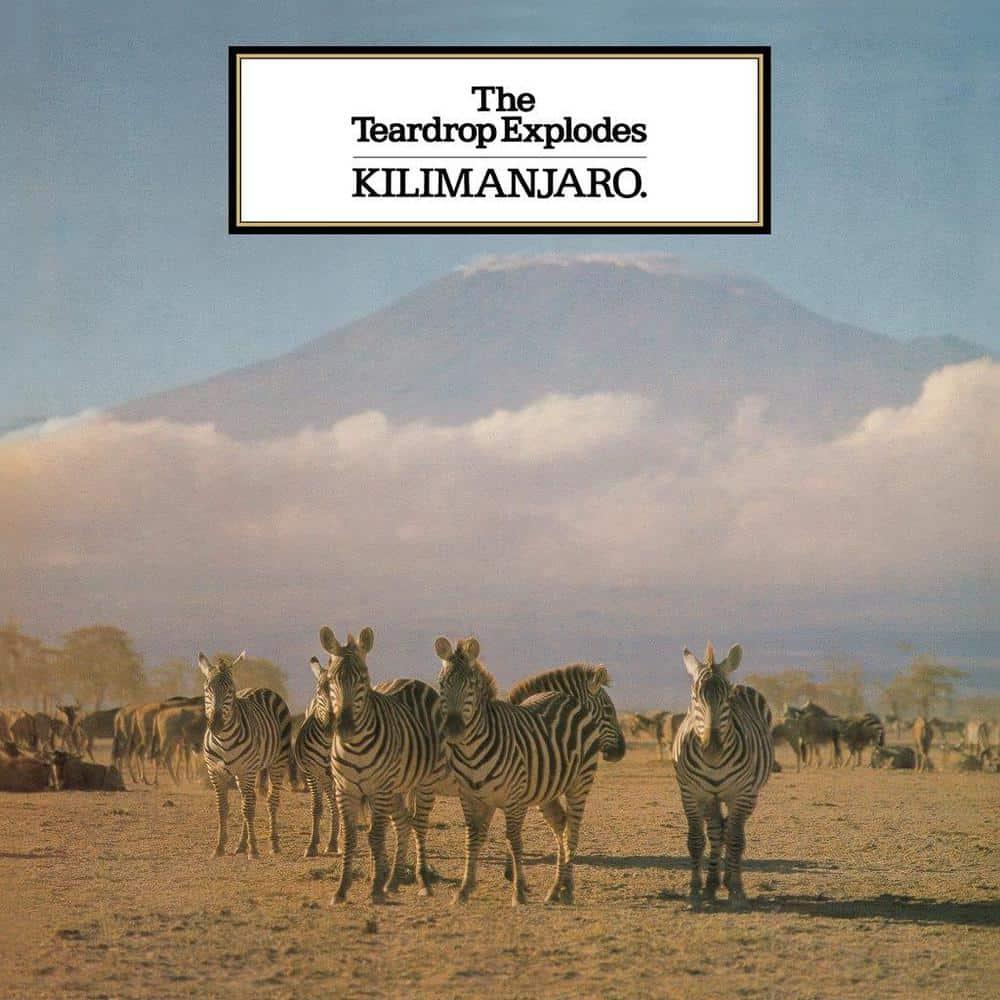 Buy Online The Teardrop Explodes - Kilimanjaro