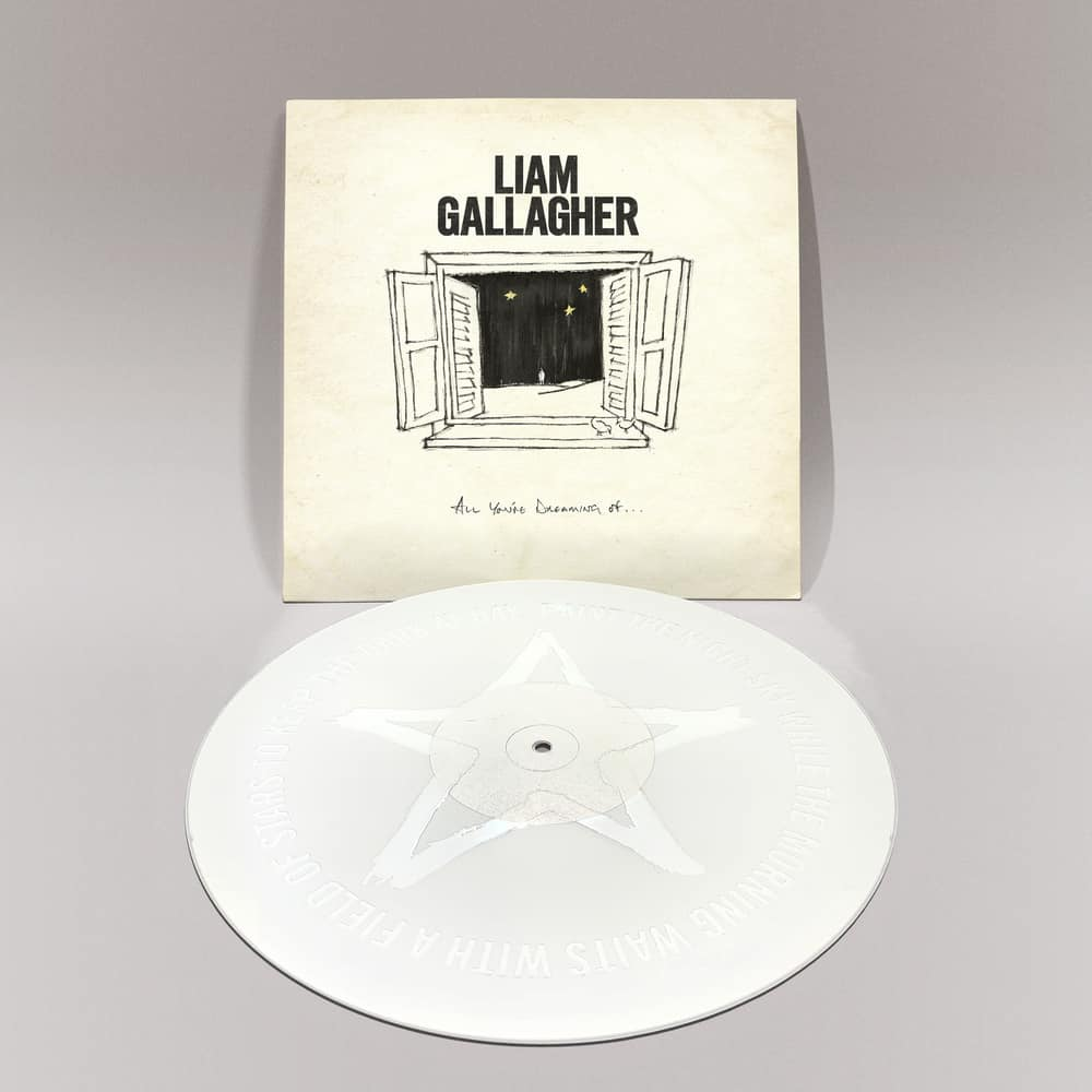 All You're Dreaming Of White 12 Inch Vinyl