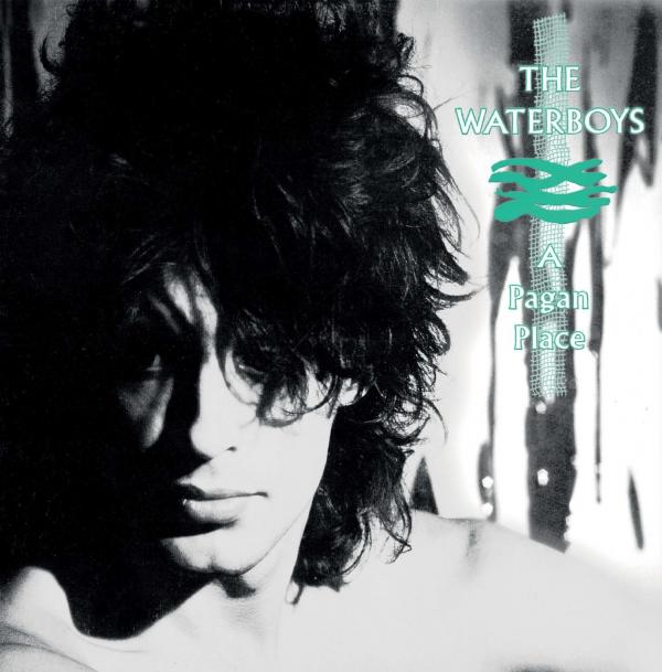 Buy Online The Waterboys - A Pagan Place Vinyl LP