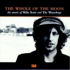 Buy Online Mike Scott/The Waterboys - The Whole Of The Moon: The Music Of Mike Scott & The Waterboys CD Album