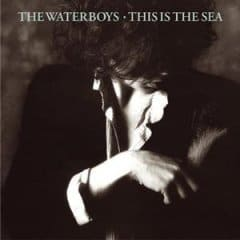 Buy Online The Waterboys - This Is The Sea 2CD Album (Remastered)