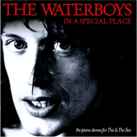 Buy Online The Waterboys - In A Special Place (The Pianos Demos From This Is The Sea) CD Album